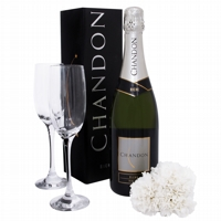 Celebre com Chandon e cravos